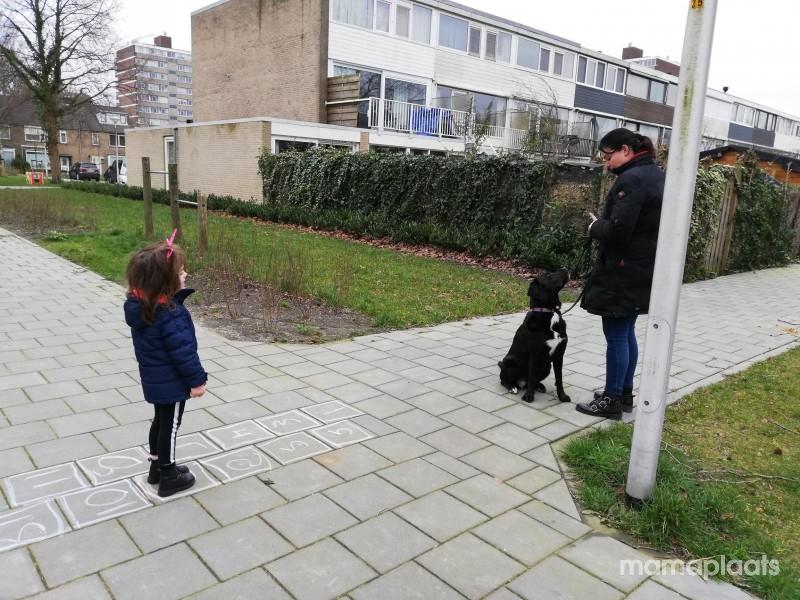 Afbeelding blog 'Saar en haar hondenangst'