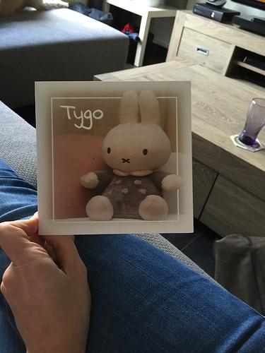 tygo-1