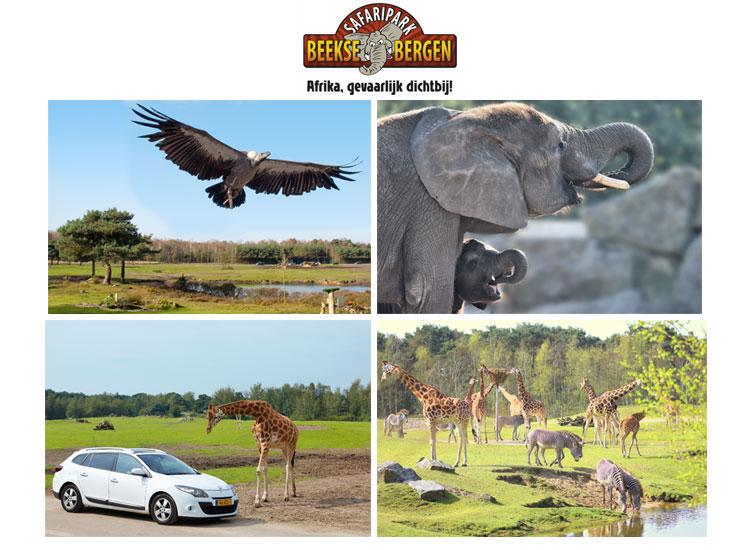 Test Safaripark Beekse Bergen